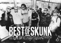 BEST of SKUNK(Long Beach Dub Allstars)ポスター!(A2サイズ/135kg)