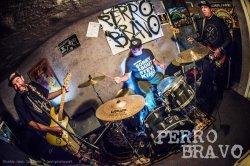 画像2: [ONE BIG FAMILY RECORDS] PERRO BRAVO / unleashed in the east