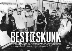 画像1: BEST of SKUNK(Long Beach Dub Allstars)ポスター!(A2サイズ/135kg)